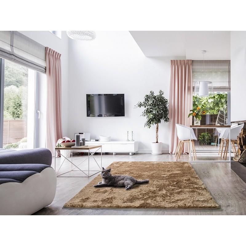 alfombra salon y dormitorio